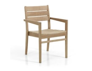 "Фото-Кресло из тика ""Chios"""