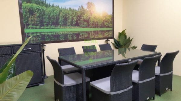 Фото-Luisa dining set 8 Ротанг мебель искусственная